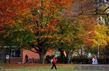 North Central College