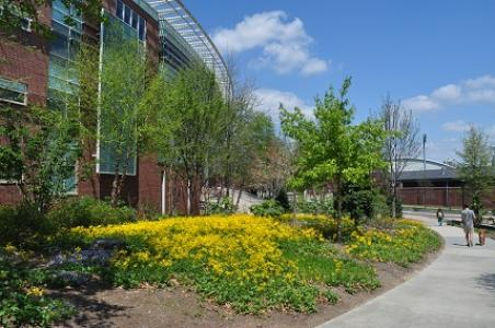Georgia Tech Campus Arboretum