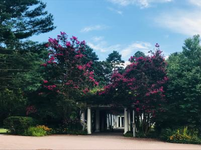 Salisbury University Arboretum