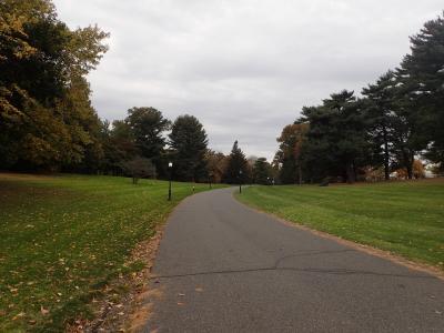 Florham Arboretum street view