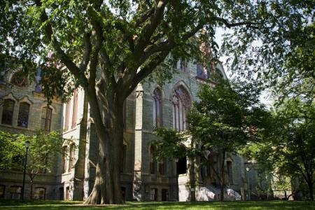 University of Pennsylvania - Treaty Elm
