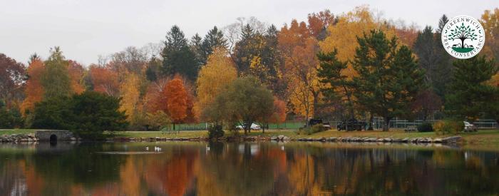 Greenwich Town Arboretum - fall trees