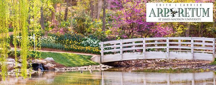 Edith J. Carrier Arboretum, Bridge