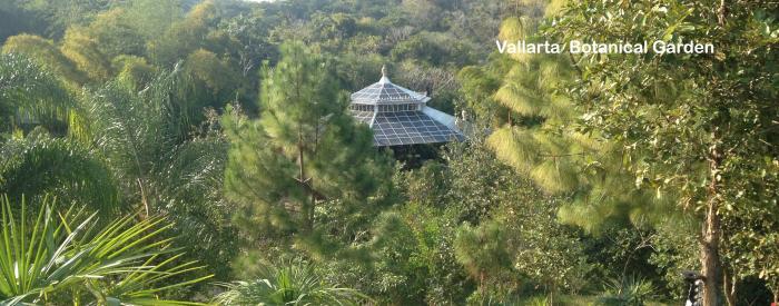 Vallarta Botanical Garden