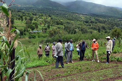 Ethiopian and Kenyan farmers inspect a field. Photo: Dori McAuliffe
