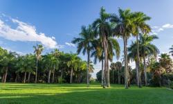 Montgomery Botanical Center